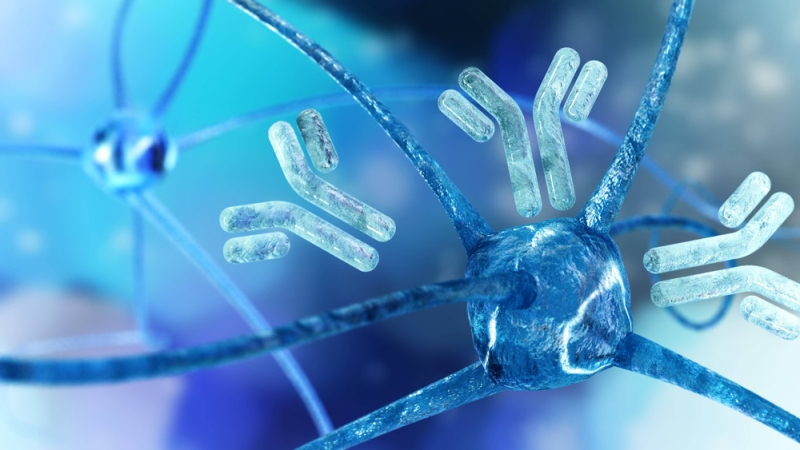 https://www.rdmag.com/news/2019/01/new-technology-speeds-discovery-novel-rare-therapeutic-antibodies